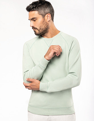 Men's organic cotton crew neck raglan sleeve sweatshirt